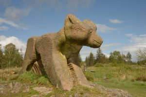 Red Sandstone Fox in Grizedale Forest