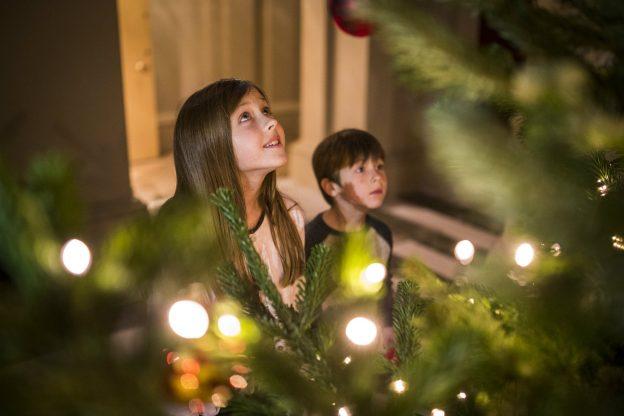 Afbeeldingsresultaat voor christmas balls in tree