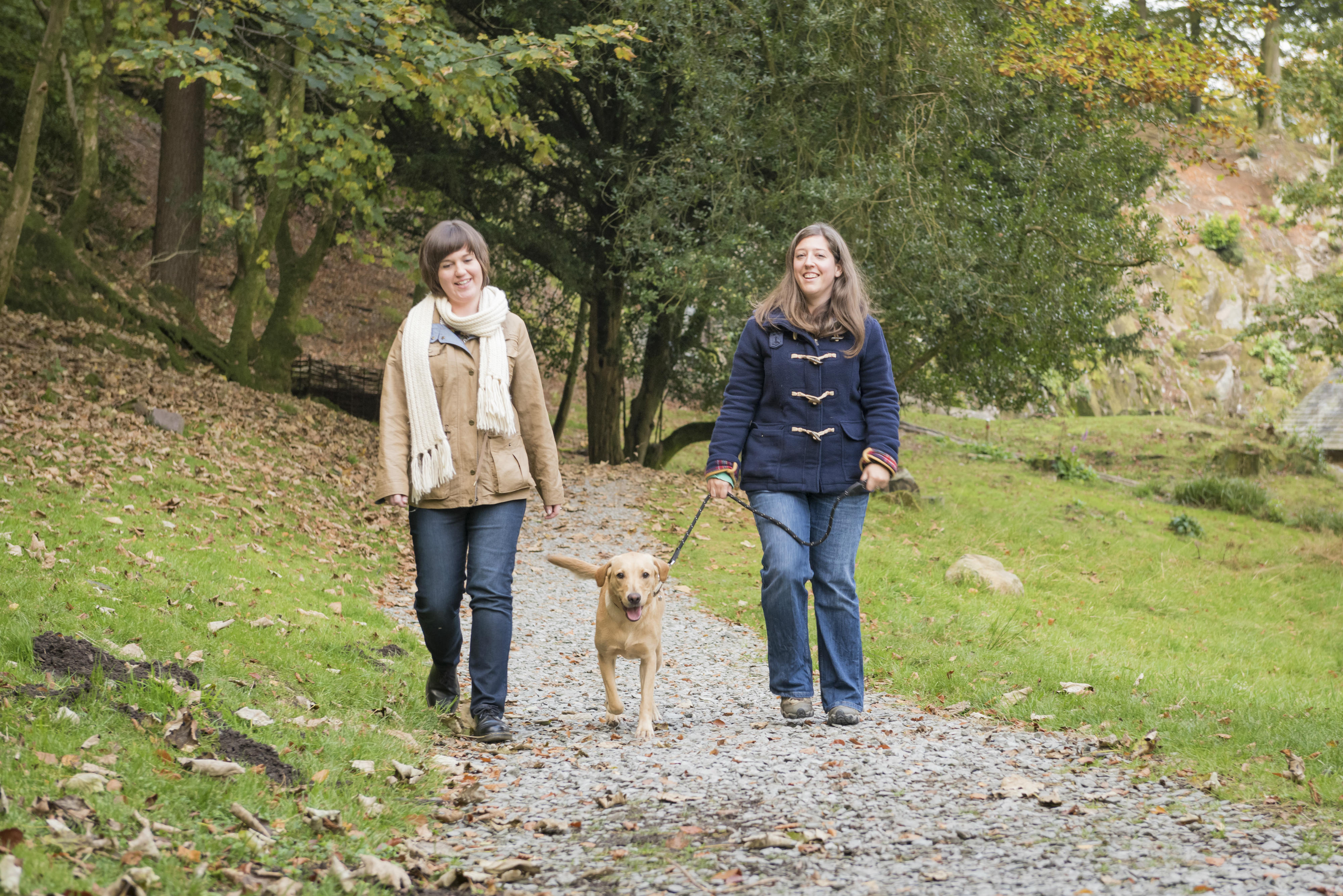 'Fitbit With Fido' Guide For Dog-Loving Visitors