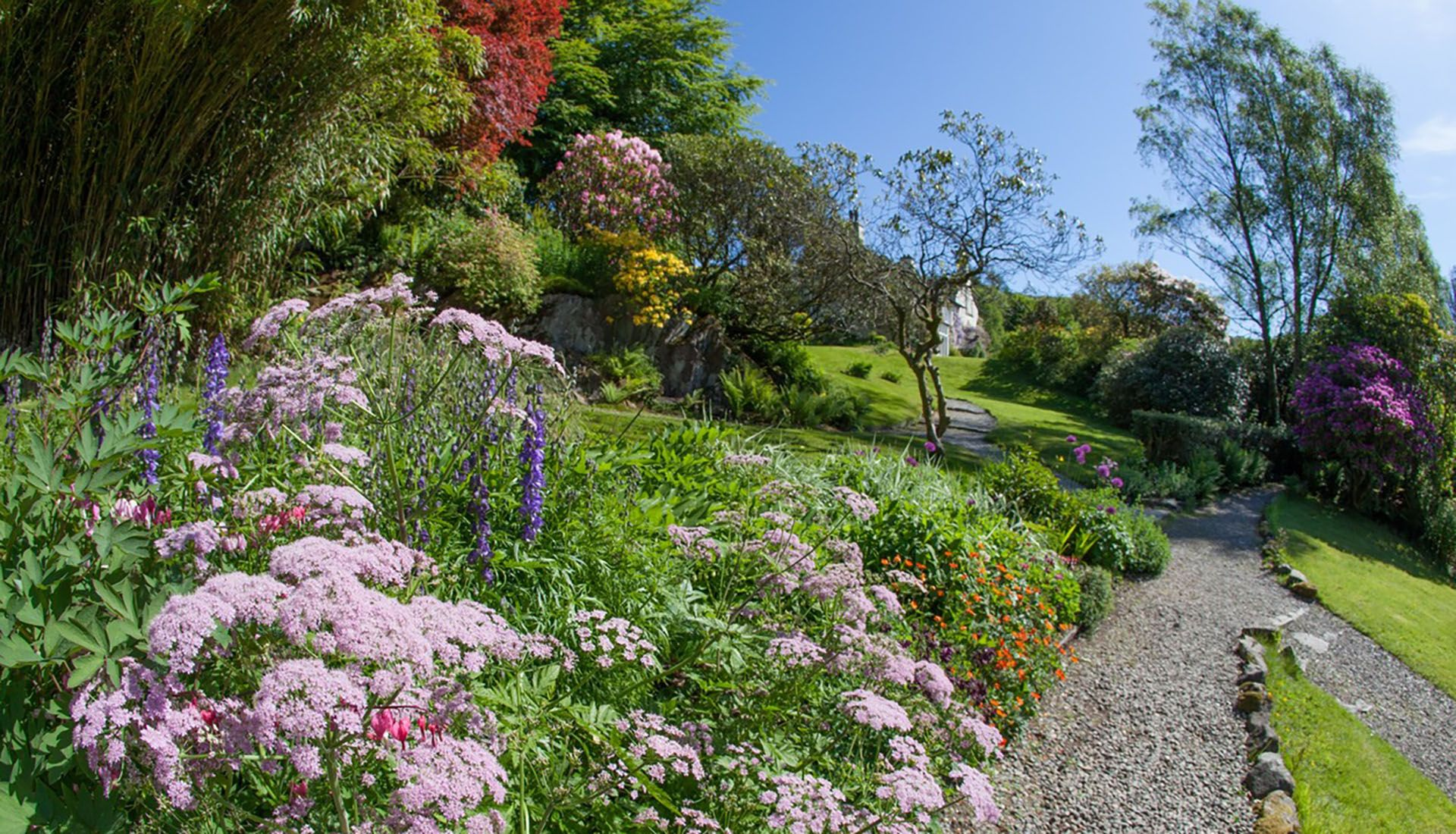 'Break for the Herbaceous Border'!